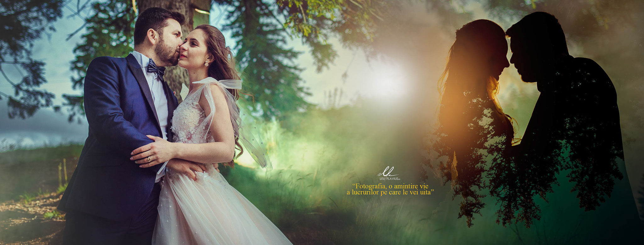 Cover - Trash the Dress - Cosmina si Ionut